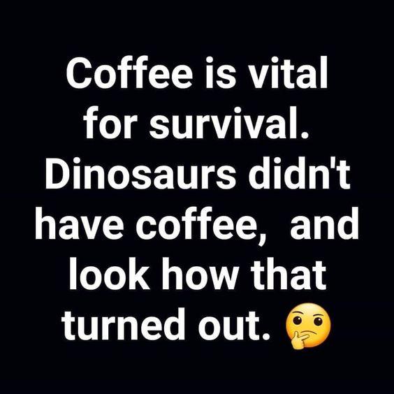 Coffee Is Vital Meme